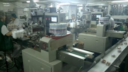 枕式包装机,多功能包装机,食品包装机,自动包装机