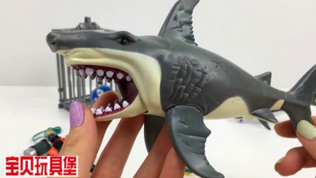 海底总动员,巨型鲨鱼和潜水员的故事