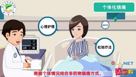 医院医疗演示 自然公益环保 文明礼仪 企业产品宣传动画片 成都拉巴拉