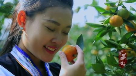 贵州广播电视台 《家乡好》系列纪录片 乡村的脚步-成品
