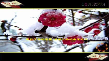 梦依蓝新年动画— 朗诵 配乐散文寻梅(295)