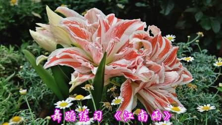 百合花2017年度舞蹈照片集锦