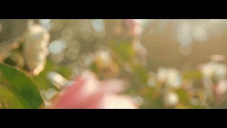The Best Of Yuan Shi苏州工业园区第十中学 初三毕业典礼宣传片