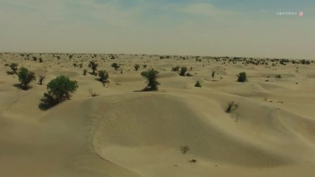 无人机航拍塔克拉玛干大沙漠