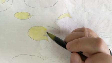 跟乐知轩主(耿老师)学工笔画—睡莲(1)