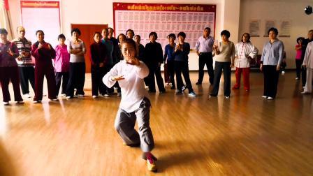 冯燕老师杨式太极拳85式教学示范(一)