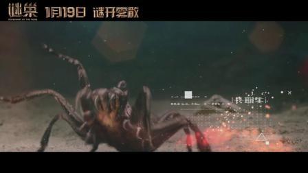 电影《谜巢》病毒视频--蜘蛛特辑