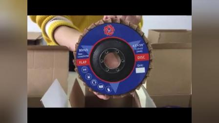 Surface Contidioning Flap Disc & Non woven flap disc