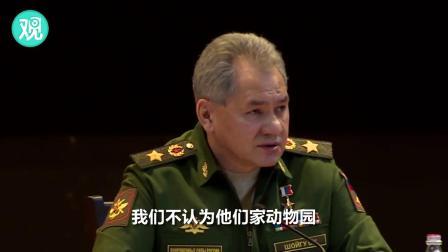 俄罗斯国防部长讽英国:不是每只猫都能当狮子