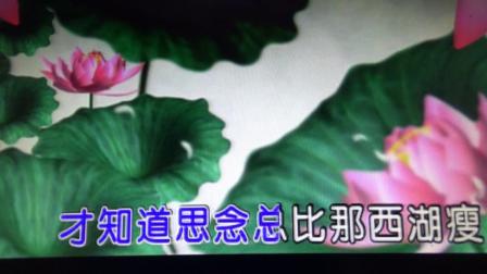 歌曲---《烟花三月下扬州》---秋丰翻唱