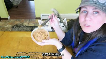 给狗狗的DIY纸杯蛋糕 简易食谱(中文字幕)