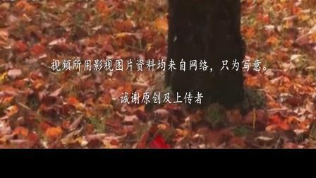 配乐散文《踏着落叶行走》作者:采薇人  朗诵、制作:零海岸