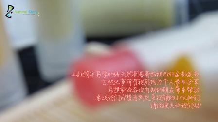 DIY红棕榈润唇膏 自制护肤品教学视频