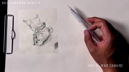 【史上最强画画教学】速写篇第一季03  线面结合画猫星人