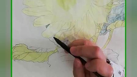 跟乐知轩主(耿老师)学工笔画——向日葵(1)