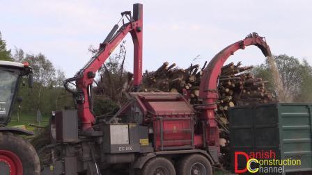 卡拉斯Xerion 5000拖拉机粉碎树木