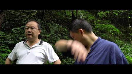 贵州向黔进集团喜迎远方客人 谈笑风生共话大梨村生态农业发展