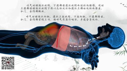 调息(逆腹式呼吸)刘长喜教授