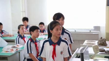岭南社版小学六年级美术上册第二单元设计天地4.创意中国龙-陈老师配视频课件教案