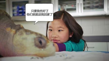 """加利""""孩""""尼亚大探险:海洋世界"""