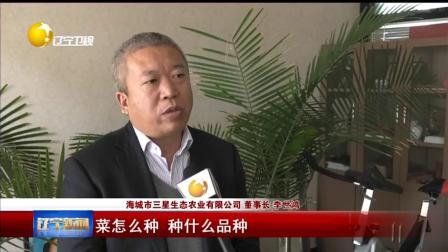 [辽宁新闻]农村科技特派行动:让农业发展的轮子转起来
