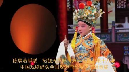 豫剧《打金枝》选段 演唱:陈展浩 中国戏剧码头梅花奖大赛 第2018-06-22期