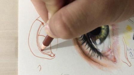 彩铅眼睛的细节要点之眼睛结构