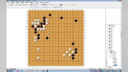 第一届青龙杯排位赛(18) 护花狂龙(白)vs朱文(黑)