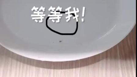 小野花样作:葡萄极其不听话的变葡萄干了 怎么处置        8.6