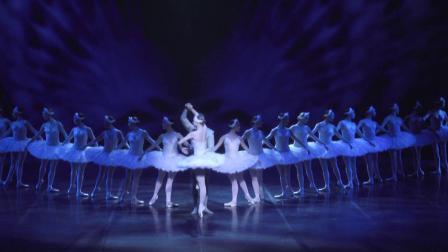 白天鹅双人舞 Ida Praetorius & Marcin Kupinski 丹麦皇家芭蕾舞团2016年