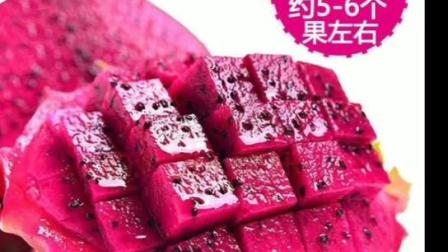 海南红心火龙果金都一号红肉火龙果大果新鲜热带水果5斤
