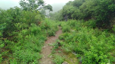 京西古道牛角岭