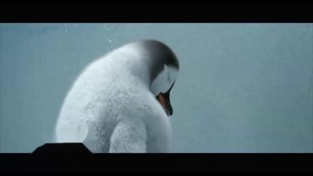 快乐的大脚(片段)曼波的踢踏舞成功吸引人类