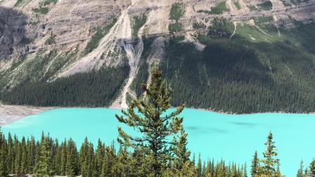 Peyto Lake佩托湖或雪狼湖