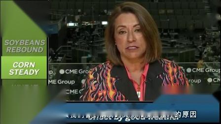芝商所市场评论- 财经视频 2018 年7 月16