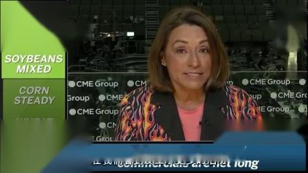 芝商所市场评论- 财经视频 2018 年7 月18