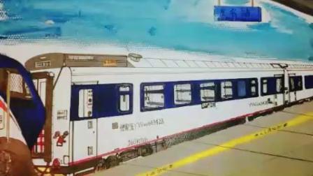 手绘火车Z202次