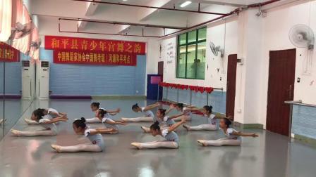 三级《鹅鹅鹅》河源和平县青少年宫舞之韵-中国舞蹈家协会考级现场