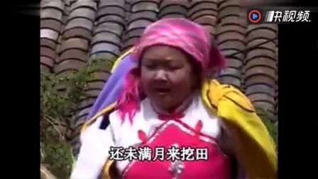 云南山歌《小矮人的悲惨生活》