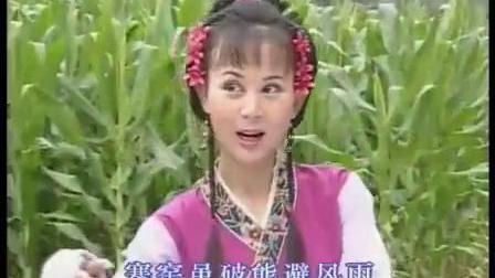 《安庆市黄梅戏艺术剧院国家一级演员 汪莉专辑-艺海千倾》