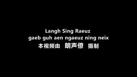 朗声僚:隆林壮族山歌《姑娘我爱你》广西民族博物馆2013年畅享民歌决赛