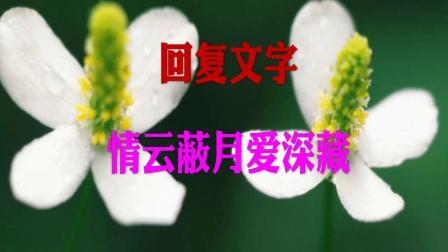 《情云蔽月爱深藏》沈佳曼慕远辰小说百度云完整版阅读