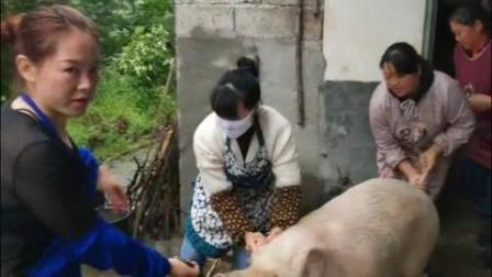 我在女君四姐妹杀大公猪  _clip截了一段小视频
