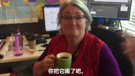 用维吉麦泡茶 你会想喝吗?