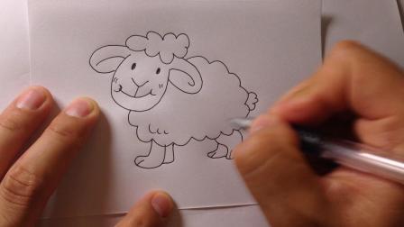 金龙手绘.简笔画动物-小绵羊