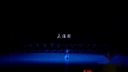 少儿舞蹈《五彩梦》第八届小荷风采全国少儿舞蹈展演_标清