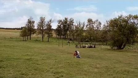 我在一条狗的使命截了一段小视频