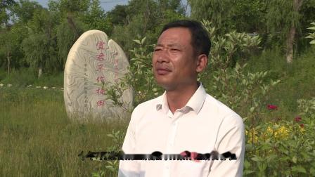 铜川市宜君县上报党支部承诺系列专题片(最新)