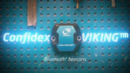 康芬戴斯Confidex Viking蓝牙信标标签
