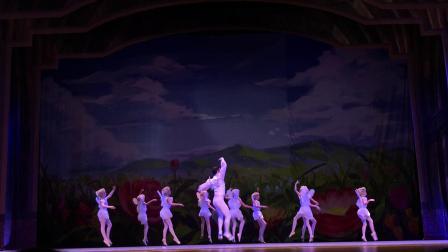 俄罗斯圣彼得堡国立少儿芭蕾舞剧《拇指姑娘》片段4